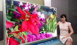 Developed 3-inch VGA level TFT-LCD /Developed 70-inch Full HD level TFT-LCD for the first time in the world